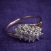 Round Diamond Cluster Ring  0.28 Total Carat Weight Solid 10k Yellow Gold Size 6 J1271550P